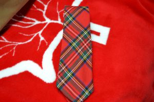The Made In Nova Scotia Store: Neck Ties (Stewart Tartan)