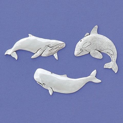 Whales Magnet Set