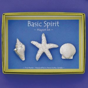 Shells Magnet Set