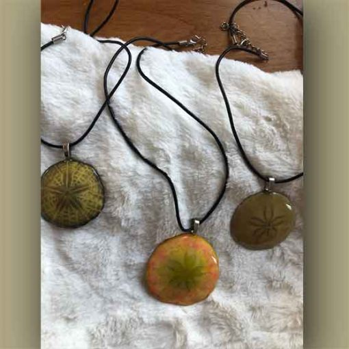 The Made in NS Store - Sand Dollar Necklace